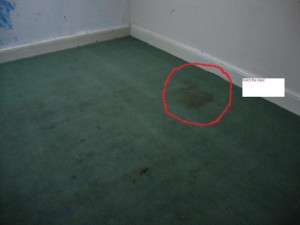 front small bed1 stain 300x225 The Secret To Even More Profitable Property Investment: Buy A Vax!