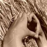love-183559_640