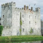 whites castle athy