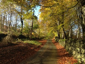 Path next to Welsh cottage for auction