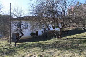 Bulgaria property for sale